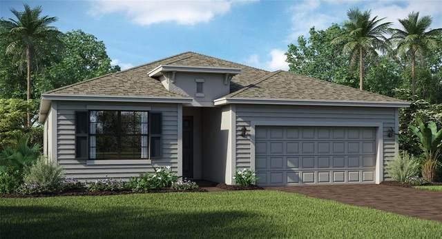 1831 East Isles Road, Port Charlotte, FL 33981 (MLS #T3314280) :: The BRC Group, LLC
