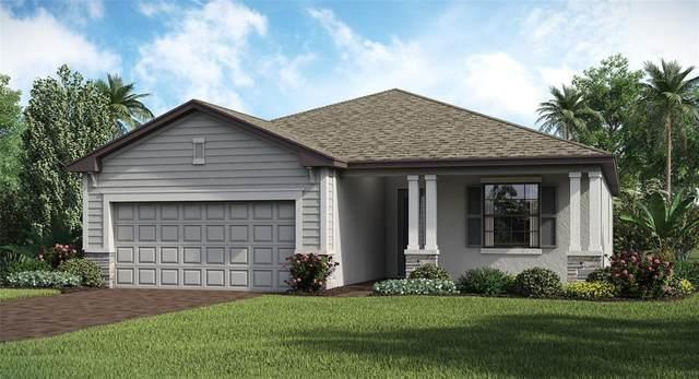 1843 East Isles Road, Port Charlotte, FL 33981 (MLS #T3314291) :: The BRC Group, LLC