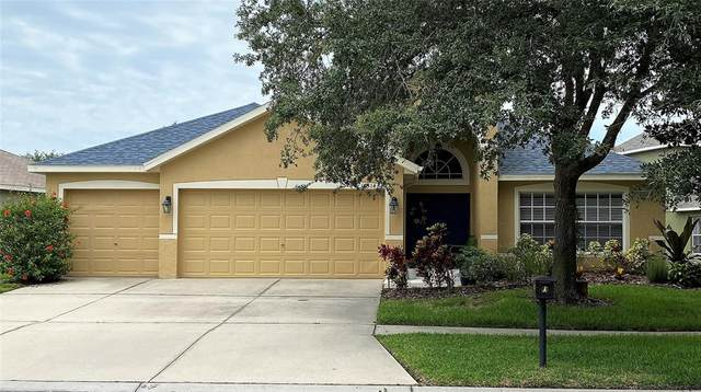 16314 Bridgewalk Drive, Lithia, FL 33547 (MLS #T3314296) :: Alpha Equity Team
