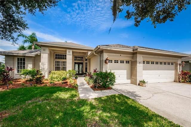 10314 Millport Drive, Tampa, FL 33626 (MLS #T3314317) :: Griffin Group