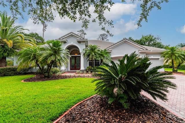 21202 Sky Vista Drive, Land O Lakes, FL 34637 (MLS #T3314322) :: Zarghami Group