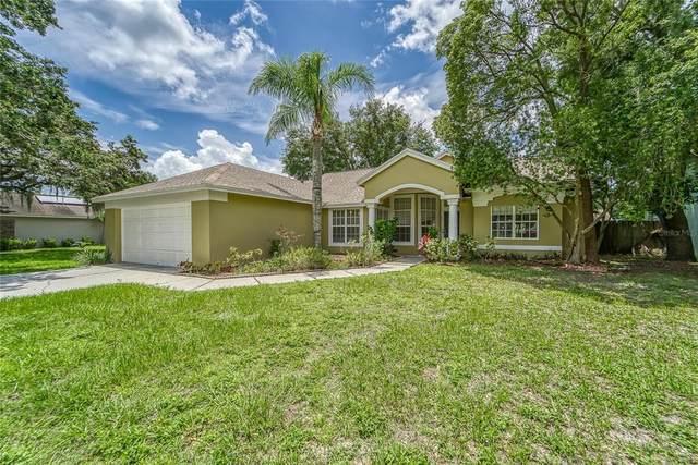 4209 Kipling Avenue, Plant City, FL 33566 (MLS #T3314323) :: Zarghami Group