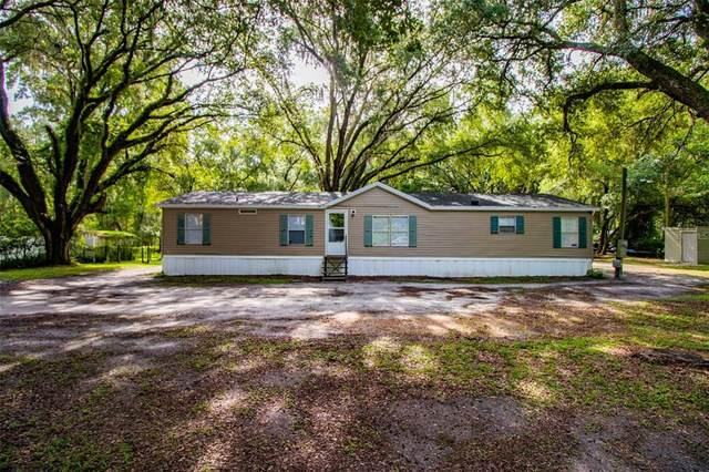 7508 Dormany Loop, Plant City, FL 33565 (MLS #T3314343) :: Vacasa Real Estate