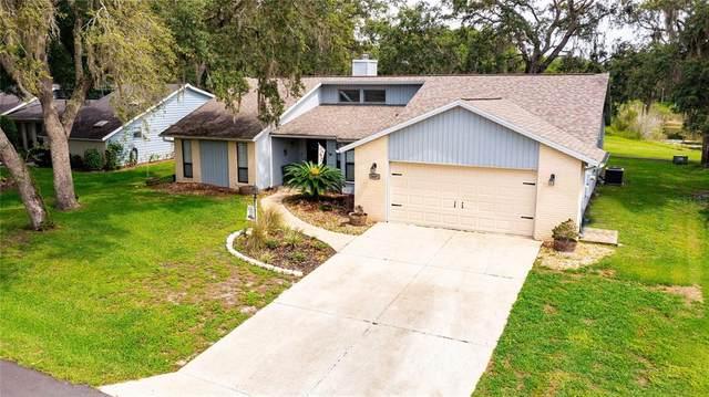 34491 Cedarfield Drive, Ridge Manor, FL 33523 (MLS #T3314362) :: Alpha Equity Team