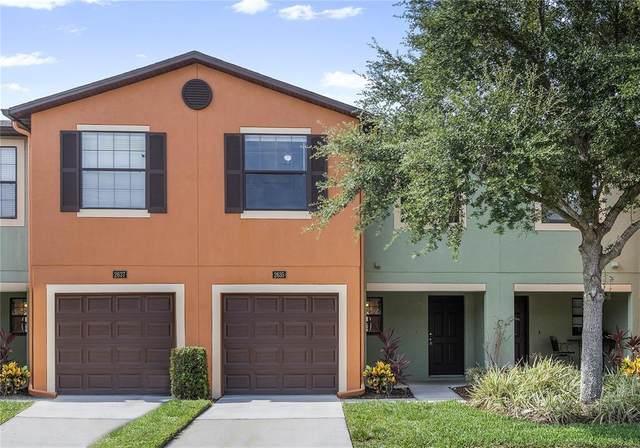 2635 Edgewater Falls Drive, Brandon, FL 33511 (MLS #T3314384) :: Griffin Group