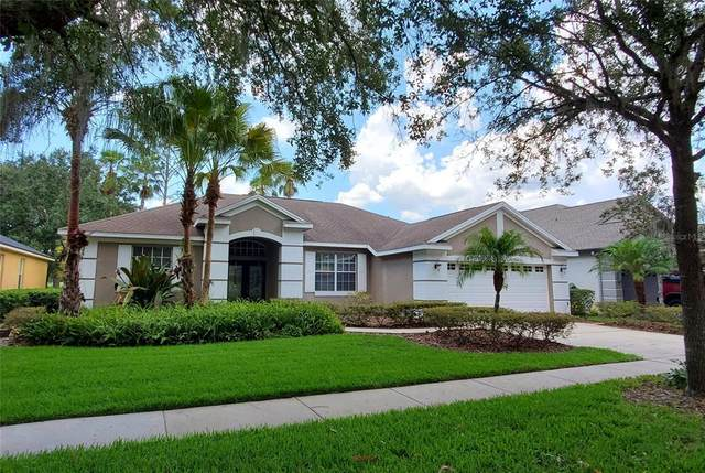 3517 Cordgrass Drive, Valrico, FL 33596 (MLS #T3314408) :: Griffin Group