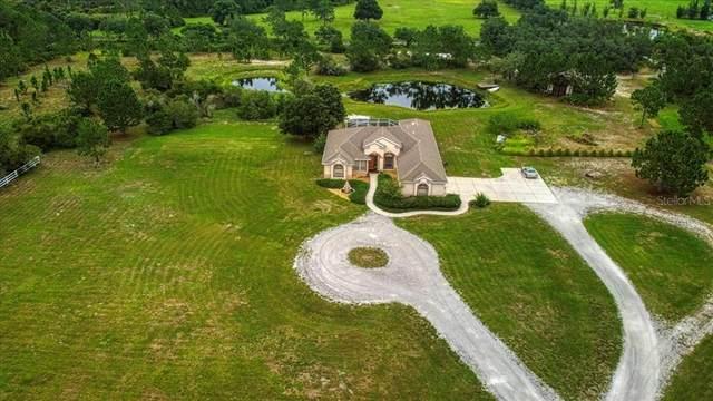 20409 65TH Avenue E, Bradenton, FL 34211 (MLS #T3314409) :: The Home Solutions Team | Keller Williams Realty New Tampa