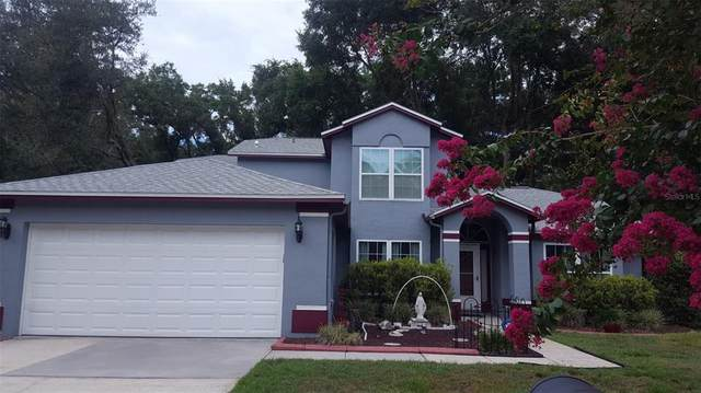 2246 Balsam Court, Land O Lakes, FL 34639 (MLS #T3314415) :: The Home Solutions Team | Keller Williams Realty New Tampa