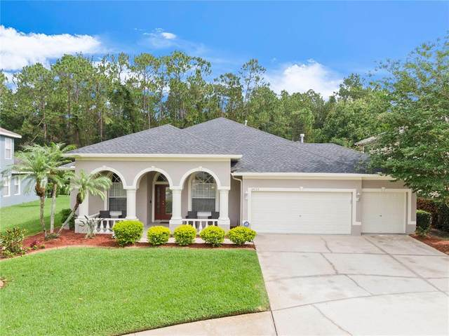 14723 Coral Berry Drive, Tampa, FL 33626 (MLS #T3314434) :: Prestige Home Realty