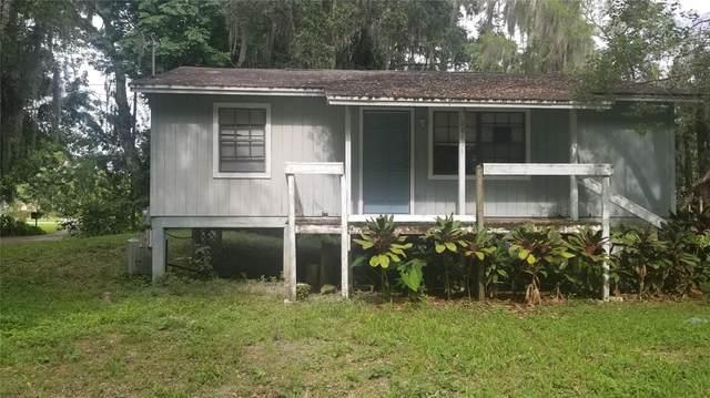 21891 Pineywood Loop, Land O Lakes, FL 34639 (MLS #T3314442) :: Zarghami Group
