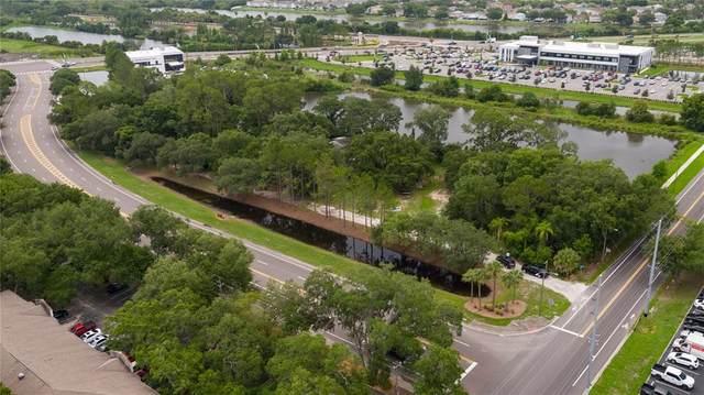 1805 M Road, Brandon, FL 33511 (MLS #T3314458) :: Griffin Group