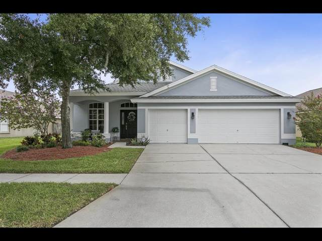 10125 Downey Lane, Tampa, FL 33626 (MLS #T3314488) :: Griffin Group