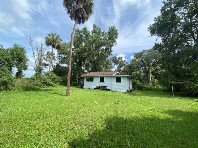 2406 E Newsome Road, Plant City, FL 33565 (MLS #T3314527) :: Zarghami Group