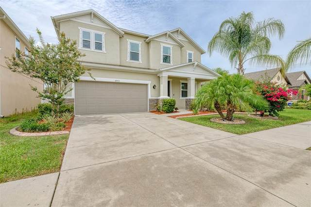 10515 Massimo Drive, Wimauma, FL 33598 (MLS #T3314548) :: Rabell Realty Group