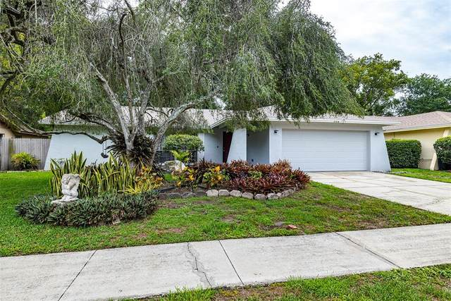 506 Constitution Drive, Tampa, FL 33613 (MLS #T3314562) :: Griffin Group