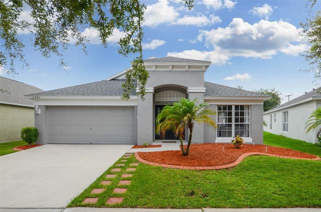 11445 Misty Isle Lane, Riverview, FL 33579 (MLS #T3314566) :: The Home Solutions Team | Keller Williams Realty New Tampa