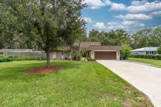18405 Tomlinson Drive, Lutz, FL 33549 (MLS #T3314615) :: Frankenstein Home Team