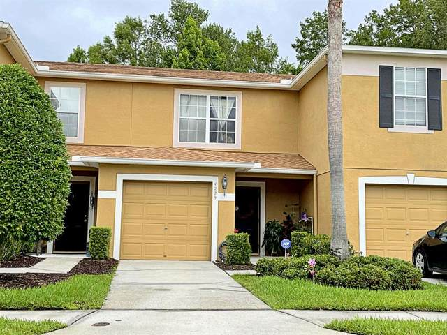 4229 Winding River Way, Land O Lakes, FL 34639 (MLS #T3314638) :: EXIT Realty Positive Edge