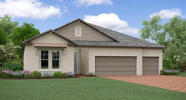 31442 Cannon Rush Drive, San Antonio, FL 33576 (MLS #T3314671) :: Griffin Group