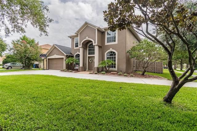 19116 Cherry Rose Circle, Lutz, FL 33558 (MLS #T3314697) :: Prestige Home Realty