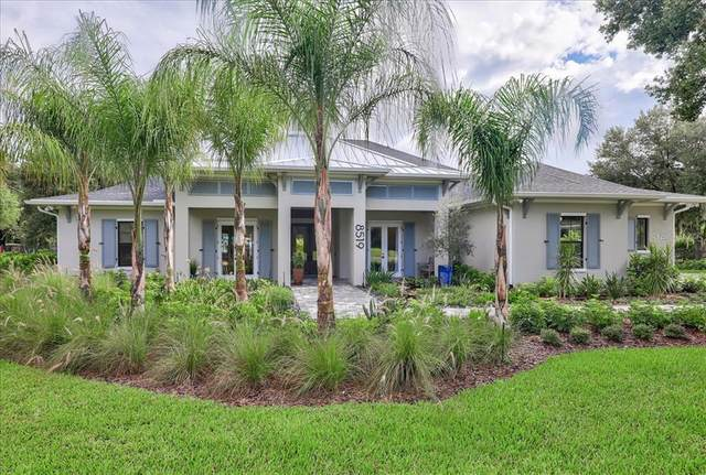 16113 Carencia Lane, Odessa, FL 33556 (MLS #T3314707) :: Rabell Realty Group