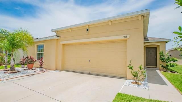 1616 Climbing Dayflower Drive, Ruskin, FL 33570 (MLS #T3314716) :: Prestige Home Realty