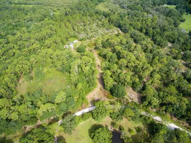 13115 Seminole Trail, Wimauma, FL 33598 (MLS #T3314840) :: Team Turner