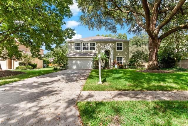 16205 Swenson Terrace, Lutz, FL 33549 (MLS #T3314898) :: Bridge Realty Group