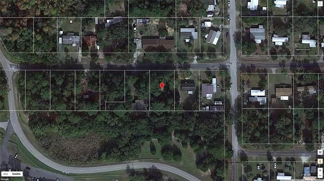 8540 W Wings Lane, Crystal River, FL 34429 (MLS #T3315149) :: Team Turner