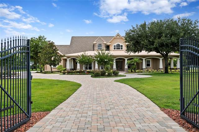 17240 Breeders Cup Drive, Odessa, FL 33556 (MLS #T3315176) :: Zarghami Group