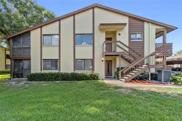 2360 Newburg Lane A, Safety Harbor, FL 34695 (MLS #T3315237) :: Bob Paulson with Vylla Home