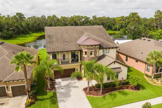 13831 Moonstone Canyon Drive, Riverview, FL 33579 (MLS #T3315345) :: Rabell Realty Group