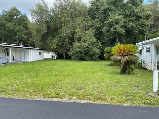 5131 Jo Street, Zephyrhills, FL 33542 (MLS #T3315435) :: Sarasota Gulf Coast Realtors