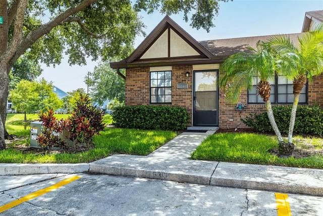 6319 Morning Sun Place, Tampa, FL 33614 (MLS #T3315441) :: Zarghami Group