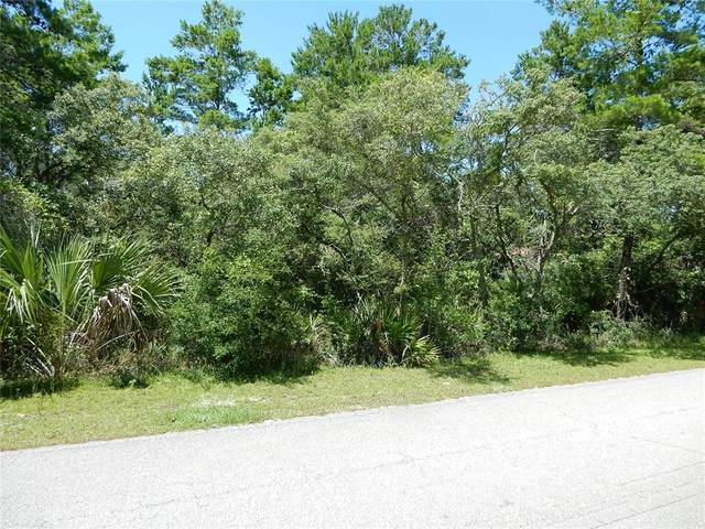 1849 Lighthouse Road, Carrabelle, FL 32322 (MLS #T3315514) :: Team Bohannon