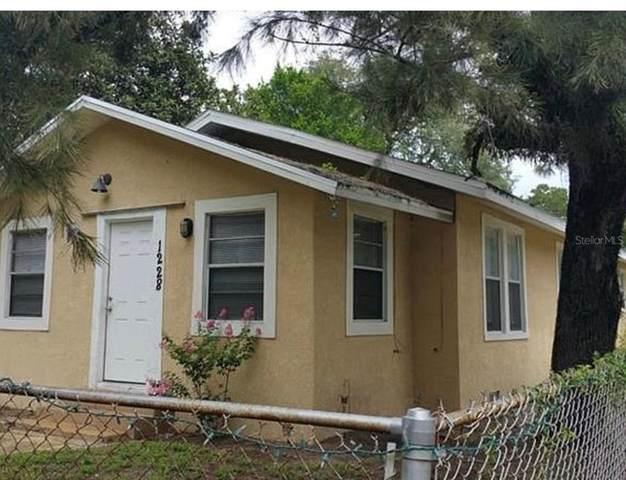 1228 E Osborne Avenue, Tampa, FL 33603 (MLS #T3315560) :: Premium Properties Real Estate Services