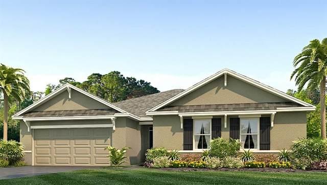 15 Hickory Course Lane, Ocala, FL 34472 (MLS #T3315866) :: Vacasa Real Estate