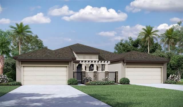 219 Villa Luna Lane, Lutz, FL 33549 (MLS #T3315868) :: Zarghami Group