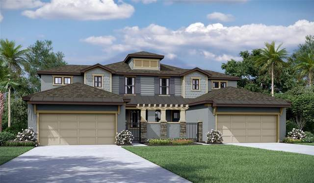 267 Villa Luna Lane, Lutz, FL 33549 (MLS #T3315876) :: Zarghami Group