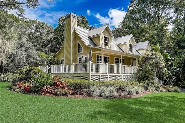 8943 Wicker Lane, New Port Richey, FL 34654 (MLS #T3315885) :: Zarghami Group