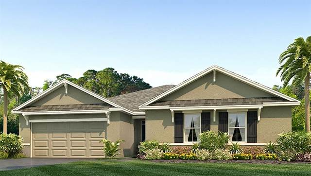 597 SE 65TH Terrace, Ocala, FL 34472 (MLS #T3315926) :: Zarghami Group