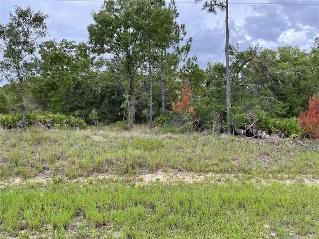 2 Cosmos Drive, Homosassa, FL 34446 (MLS #T3316026) :: Zarghami Group