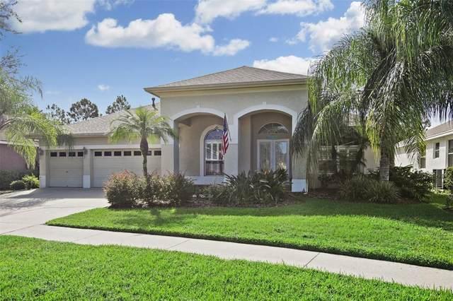 18322 Eastwyck Drive, Tampa, FL 33647 (MLS #T3316236) :: Team Bohannon