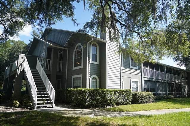 11806 Skylake Place 11806B, Tampa, FL 33617 (MLS #T3316323) :: The Kardosh Team