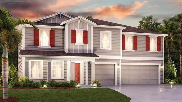 5345 Red Coral Circle, Mount Dora, FL 32757 (MLS #T3316668) :: The Nathan Bangs Group