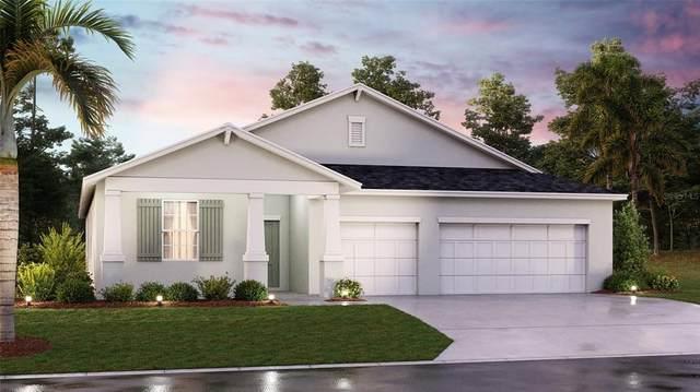 661 Taurus Lane, Saint Cloud, FL 34772 (MLS #T3316723) :: Zarghami Group