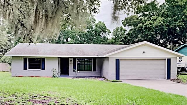 36136 Pine Tree Street, Fruitland Park, FL 34731 (MLS #T3316816) :: Bridge Realty Group