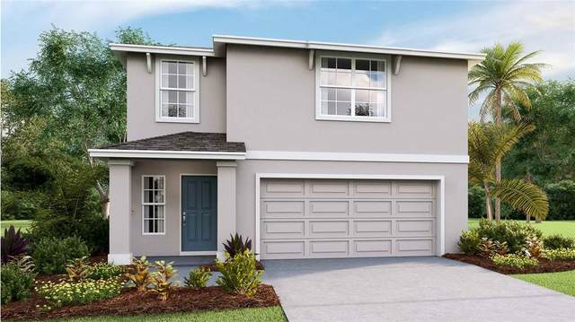 36483 Spanish Rose Drive, Dade City, FL 33525 (MLS #T3316827) :: Zarghami Group