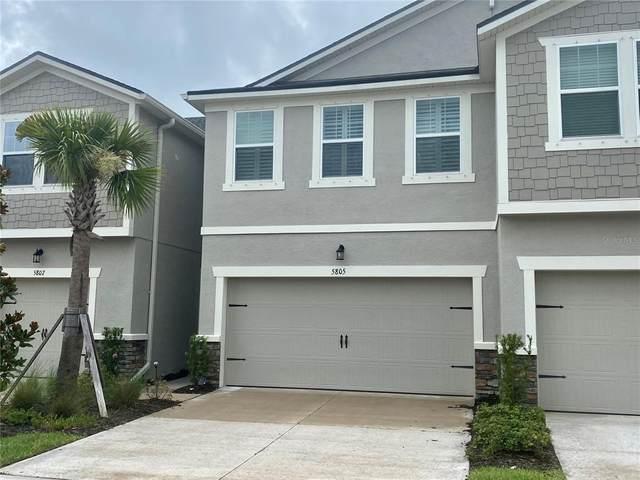 5805 Grand Sonata Avenue, Lutz, FL 33558 (MLS #T3316884) :: Alpha Equity Team