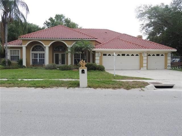 14905 Evershine Street, Tampa, FL 33624 (MLS #T3316891) :: Zarghami Group